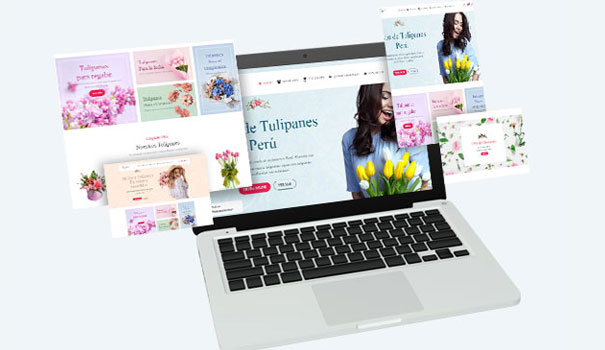 Páginas Web Lima